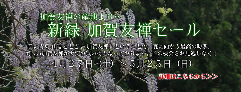 新緑 加賀友禅セール