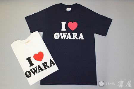 Tシャツ1-1